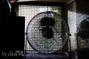 Window Fan Tristar VE-5933